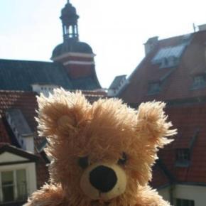 Hostellit - Teddy Bear Hostel Riga