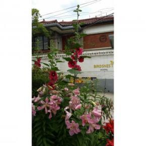 Hostellit - Birdsnest Hostel Hongdae