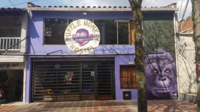 Hostellit - Purple Monkey Hostel
