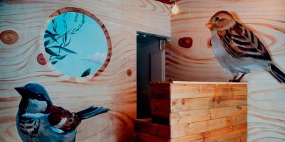 Hostellit - Bird House Hostel